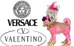 Sławni projektanci Versace i Valentino pójdą z torbami?!